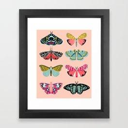 Lepidoptery No. 1 by Andrea Lauren  Framed Art Print