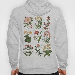 Flower Sketches Hoody
