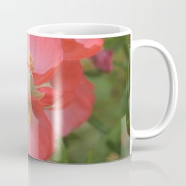 Apricot Mallow Blossoms Coffee Mug