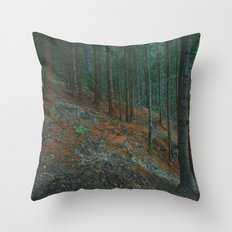 into the woods 02 Throw Pillow