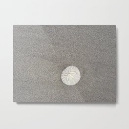 The Perfect Sand Dollar Metal Print