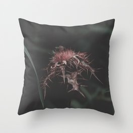 Recovery of our own ancestral wisdom Throw Pillow