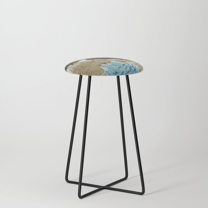Carbonation Collection: ski Counter Stool
