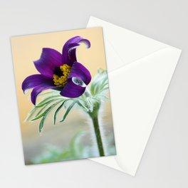 springtime! ... pasqueflower Stationery Cards