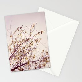 the sun is in the sky  Stationery Cards