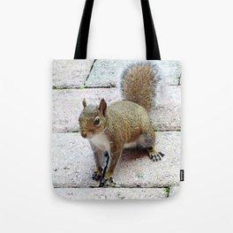 Squirreling Around Tote Bag