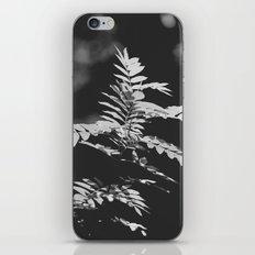 Black and White Leaves iPhone & iPod Skin