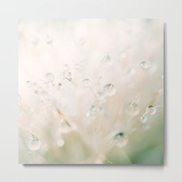 winter reflected in the morning dew Metal Print