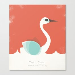 Tundra Swan Canvas Print