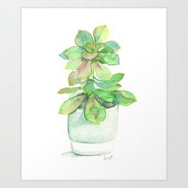 Succulent in Pot Art Print