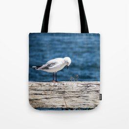 The Thinking Seagull Tote Bag