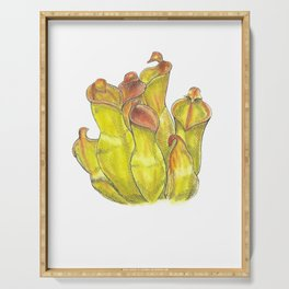 Sun Pitcher Plant Serving Tray