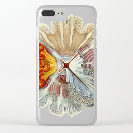 Amaury Clear iPhone Case
