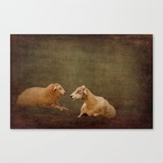 The smiling Sheeps Canvas Print