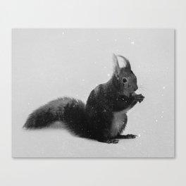 Squirrel (B&W) Canvas Print