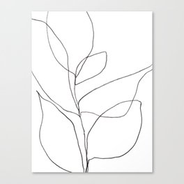 Minimalist Line Art Plant Drawing Canvas Print