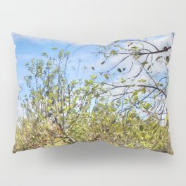 The Apple Orchard Pillow Sham