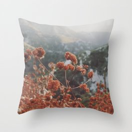 Angeles National Forest III Throw Pillow