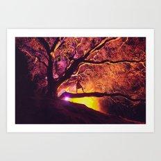 Midnight Spell Art Print