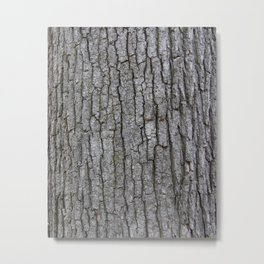white oak bark Metal Print
