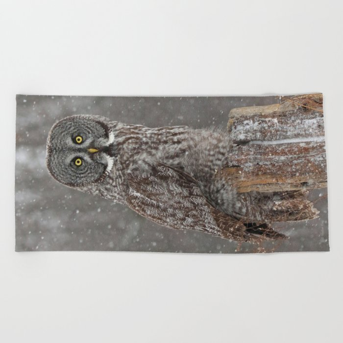 Flurries in the forecast Beach Towel