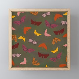 Butterflies & Moths Framed Mini Art Print