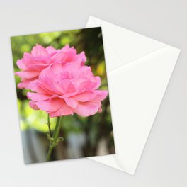 Soft Pink Roses Stationery Cards