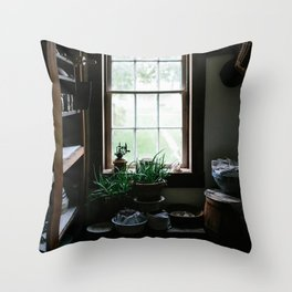 Vintage Pantry With Plants Throw Pillow