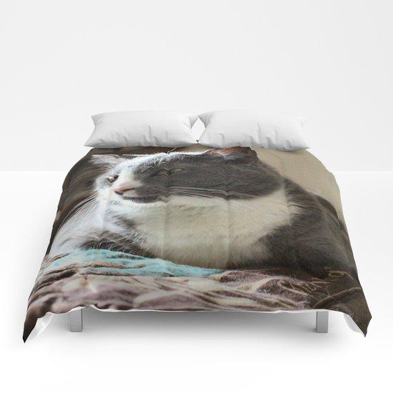 Budda Comforters