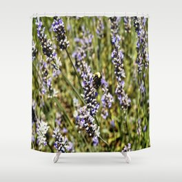 The Buzz in the Lavender Field Shower Curtain