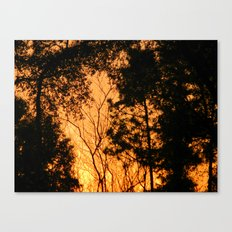 Fire in the woods Canvas Print