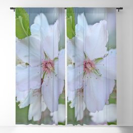 Almond tree flower blooming Blackout Curtain