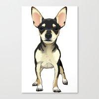 chihuahua Canvas Prints featuring Chihuahua by jackwatson05