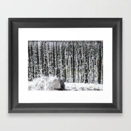 Waterfall II Framed Art Print