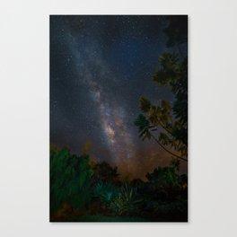 Hale Canvas Print