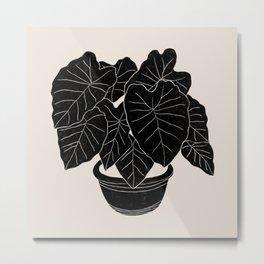 Black & White Plants / Elephant Ear Metal Print