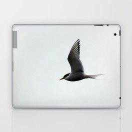 Artic Tern Laptop & iPad Skin