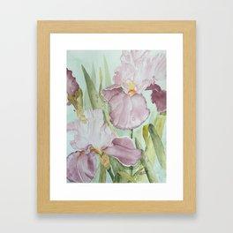 Lavender Beauties (irises) Framed Art Print