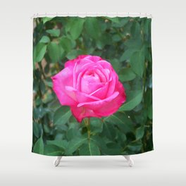 Floral Print 100 Shower Curtain