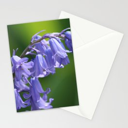 English Bluebells Stationery Cards