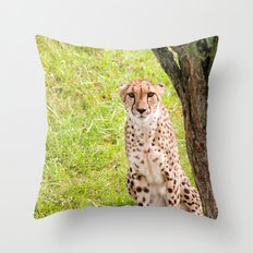 Hey Kitty Throw Pillow