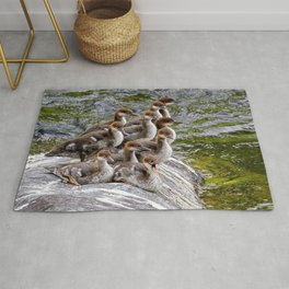 10 Little Mergansers on a Rock Rug