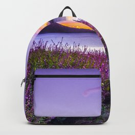 BROWN WOODEN DOCK BETWEEN LAVENDER FLOWER FIELD NEAR BODY OF WATER DURING GOLDEN HOUR Backpack