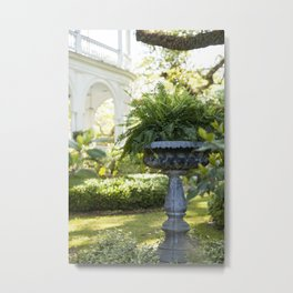 Charleston Fern Metal Print