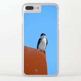 Swallow & Sky Clear iPhone Case