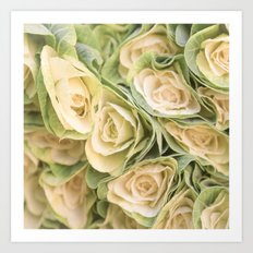 Greenyellow roses Art Print