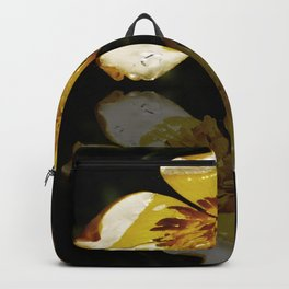 Upon Reflection... Backpack