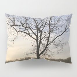Sunrise Solitude Pillow Sham