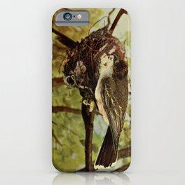 Neltje Blanchan - Bird Neighbours (1898) - Eastern Kingbird (Tyrannus tyrannus) iPhone Case