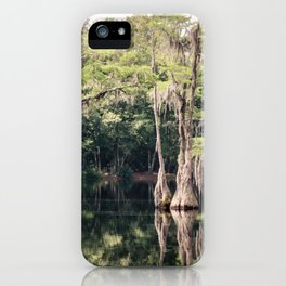Florida Beauty 9 iPhone Case